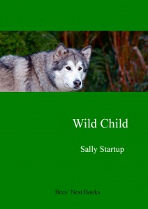 Wild Child smashwords cover
